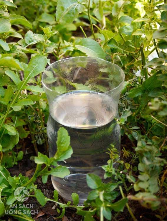 Đổ đầy nước vào chai