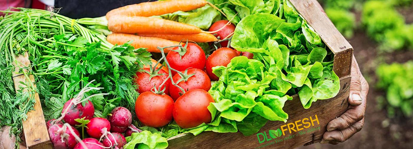 Chúng tôi cung cấp tất cả các lọai rau củ quả tươi sạch an toàn mỗi ngày và chất lượng tuyệt hảo nhất đến gia đình bạn, sản phẩm của chúng tôi có nguồn gốc từ những nông trại rau thủy canh, rau hữu cơ lớn và hiện đại nhất tại Đà Lạt.