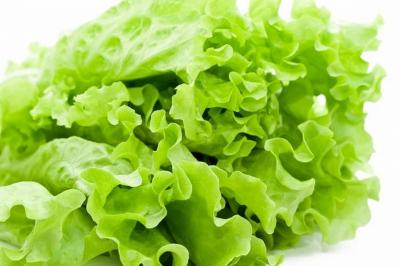 Các món ăn từ rau xà lách (Carol) thơm ngon bổ dưỡng